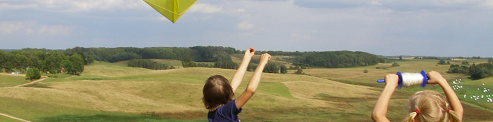 analysis-consultancy_kids-succeeding-flying-a-kite